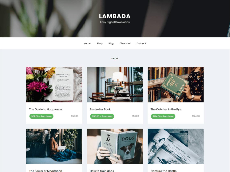 LambadaLite wordpress blog teması